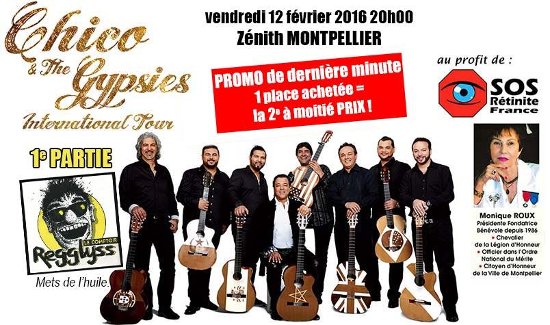 accueil-concert-gypsie.3